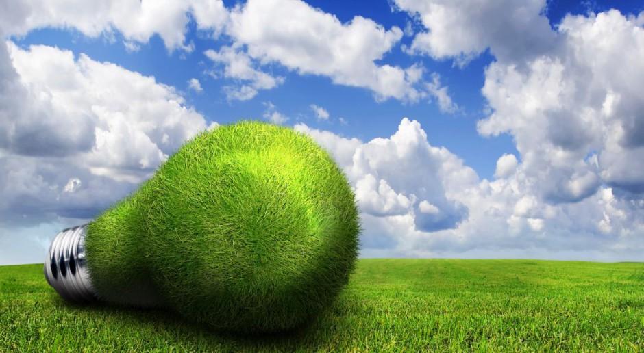 Moda na zielone biura - coraz więcej pretenduje do uzyskania certyfikatów LEED i BREEAM