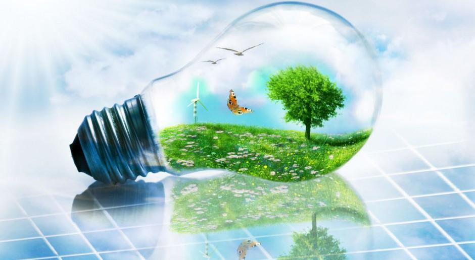 Innowacyjny model biznesowy i efektywność energetyczna