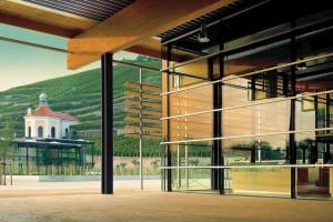 Boom w architekturze winnic