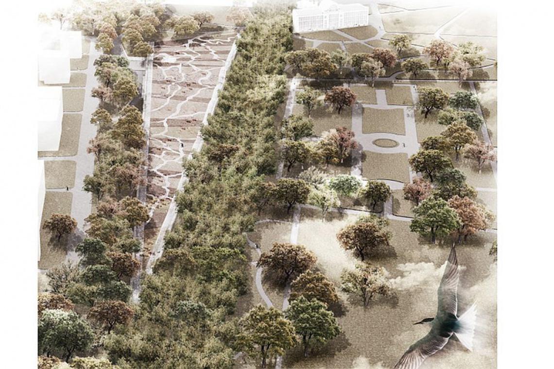 """Ogród XXI wieku będzie """"falującą łąką kwietną"""""""