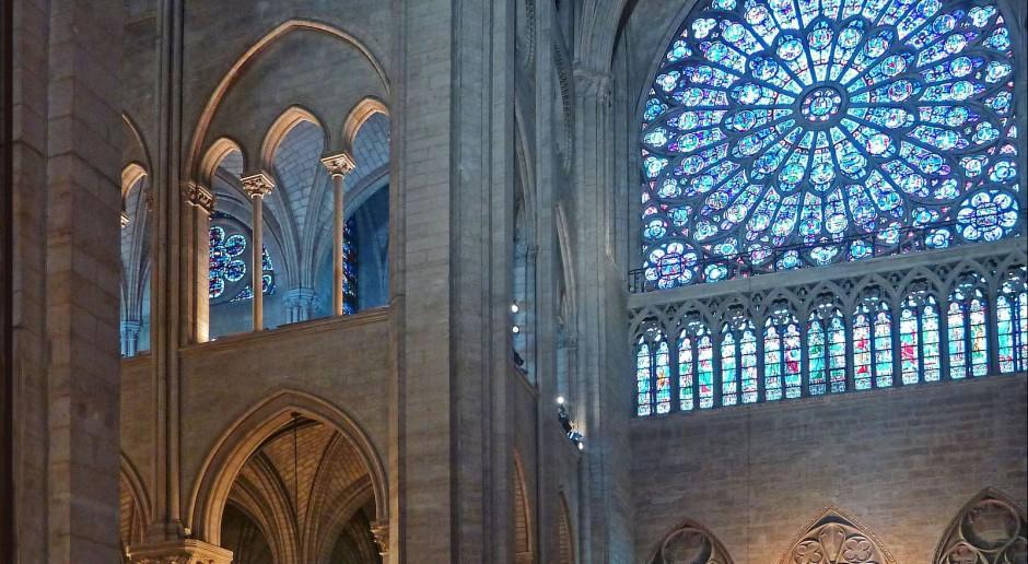 Katedra Notre-Dame w zupełnie nowym świetle