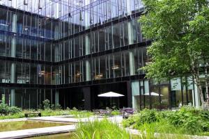 Wieczna zieleń na patio KBC według projektu Hadart