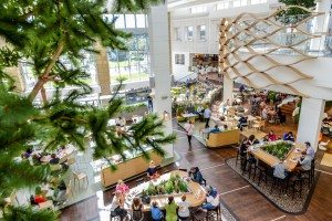 Arkadia już po zmianach - nowa strefa restauracyjna i więcej miejsca