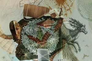 Fotel Woodi od Sitag - splot natury i techniki