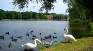 Gmina Srokowo chce terenu rekreacyjnego nad jeziorem Silec