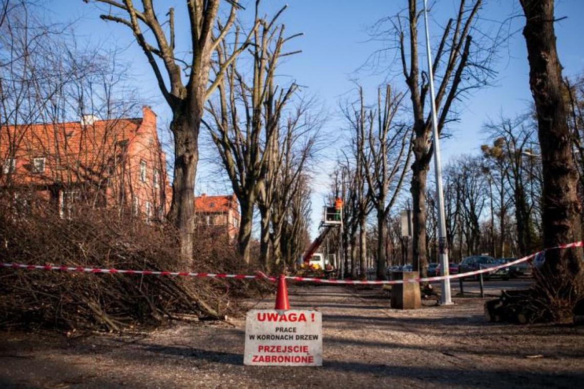 Gdańsk zyska kolejne urokliwe miejsce do spacerów
