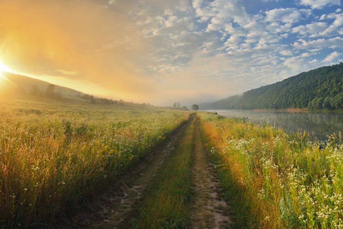 Co dalej z ustawą krajobrazową? Projekt wraca z Sejmu