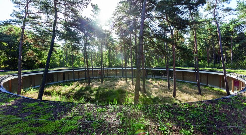 Ciekawy hostel w środku lasu i pod ziemią