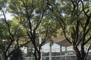 Intrygujący, pełen światła i zieleni ratusz w Buenos Aires od Foster and Partners