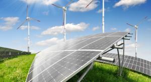Świeży powiew odnawialnej energii w działalności Signify w Polsce