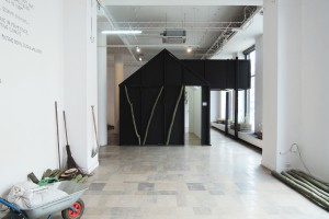 Nowy projekt BudCud - aranżacja wystawy Ziemia i Woda w BWA Design Wrocław