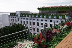 Zielone dachy na budynkach pofabrycznych w Łodzi