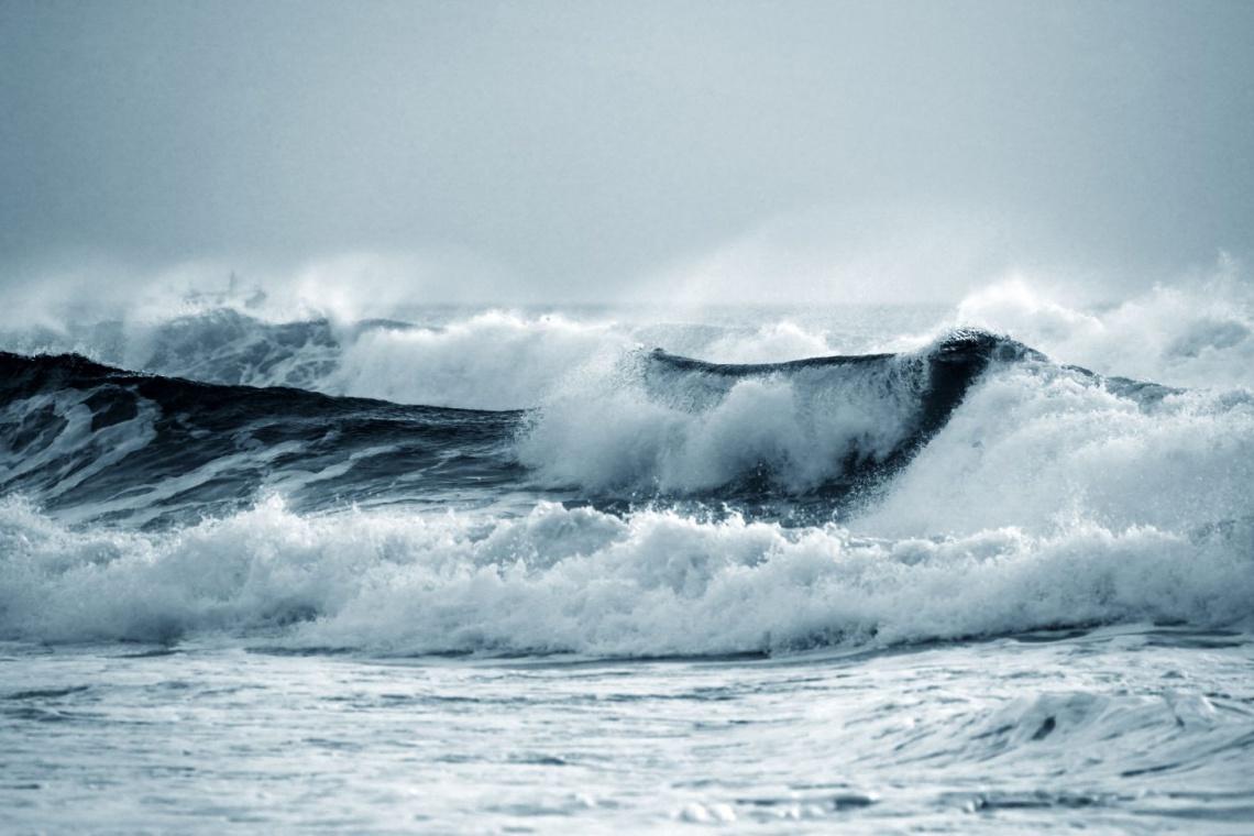 Na Bałtyku mogą powstać farmy wiatrowe