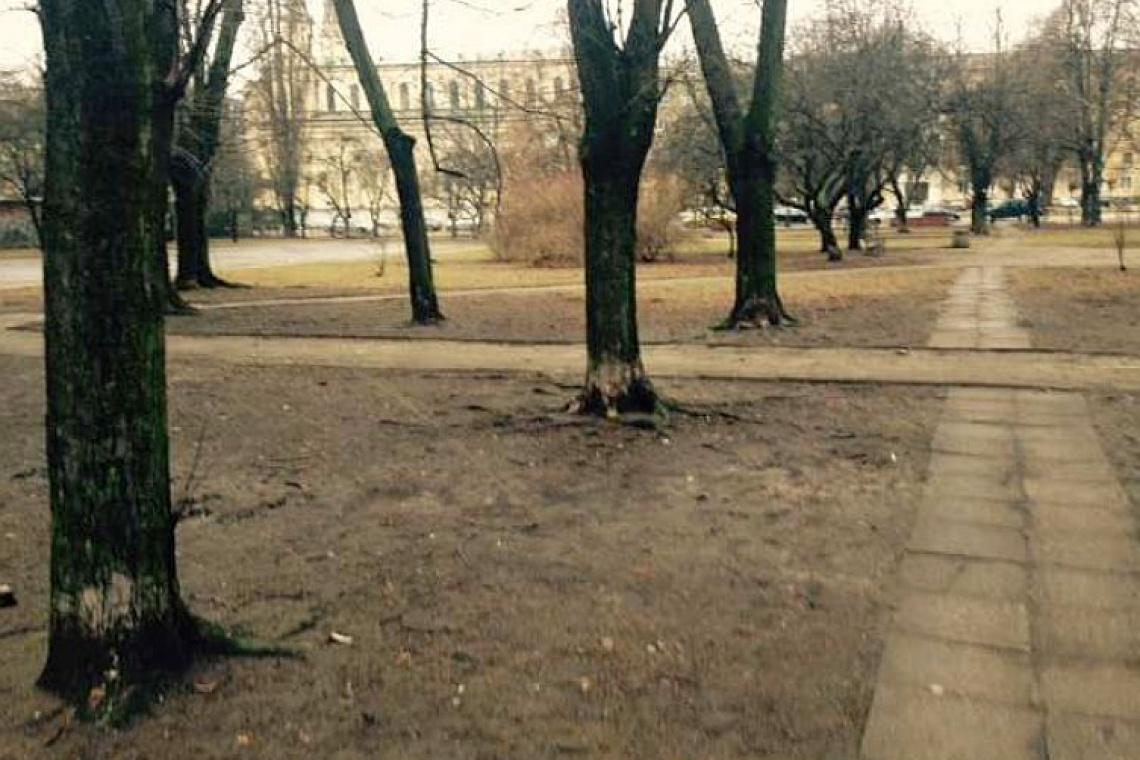 Skwer Sybiraków na Woli doczeka się rewitalizacji