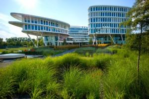 Zieleń w Business Garden Warszawa zajmuje 60 proc. terenu