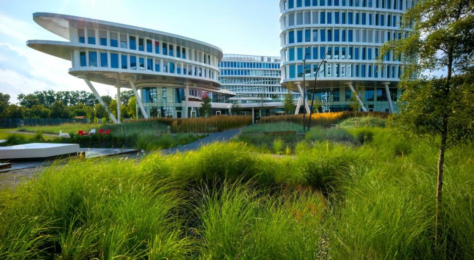 Zielone dachy, tarasy, oczka wodne i wysokie trawy - niesamowicie zielony projekt