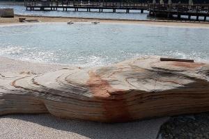 Basen jak rajska plaża - największy na świecie i powstał w Polsce