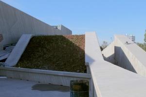 Zielony dach na CKK Jordanki w Toruniu