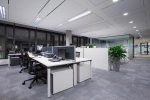 Zobacz biuro firmy Lindt w Royal Wilanów