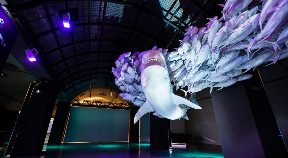 Interaktywna wystawa Hydropolis we Wrocławiu