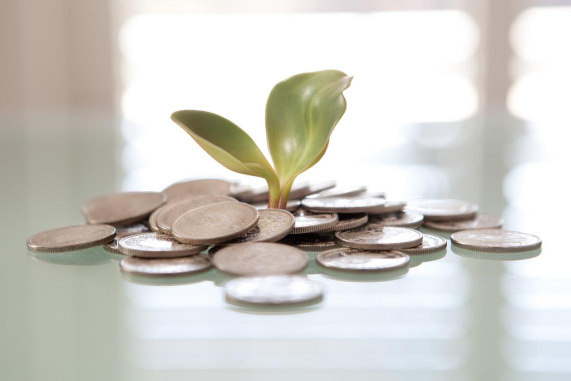 Rekordowa kwota na budżet obywatelski w Olsztynie