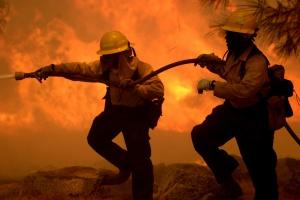 Ogień jest bez szans. Inwestorzy wybierają jakość i bezpieczeństwo