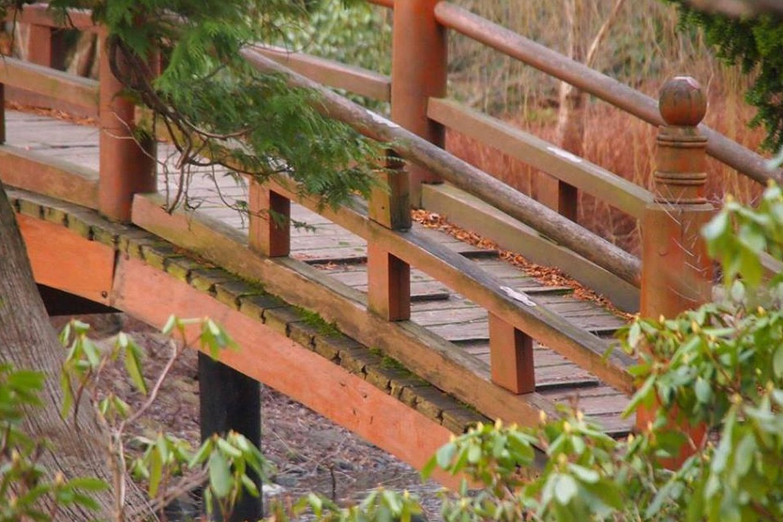 Zabytkowy mostek we wrocławskim Ogrodzie Japońskim po renowacji