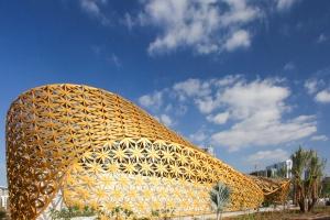 Piękny i delikatny jak motyl - pawilon motyli w Emiratach Arabskich