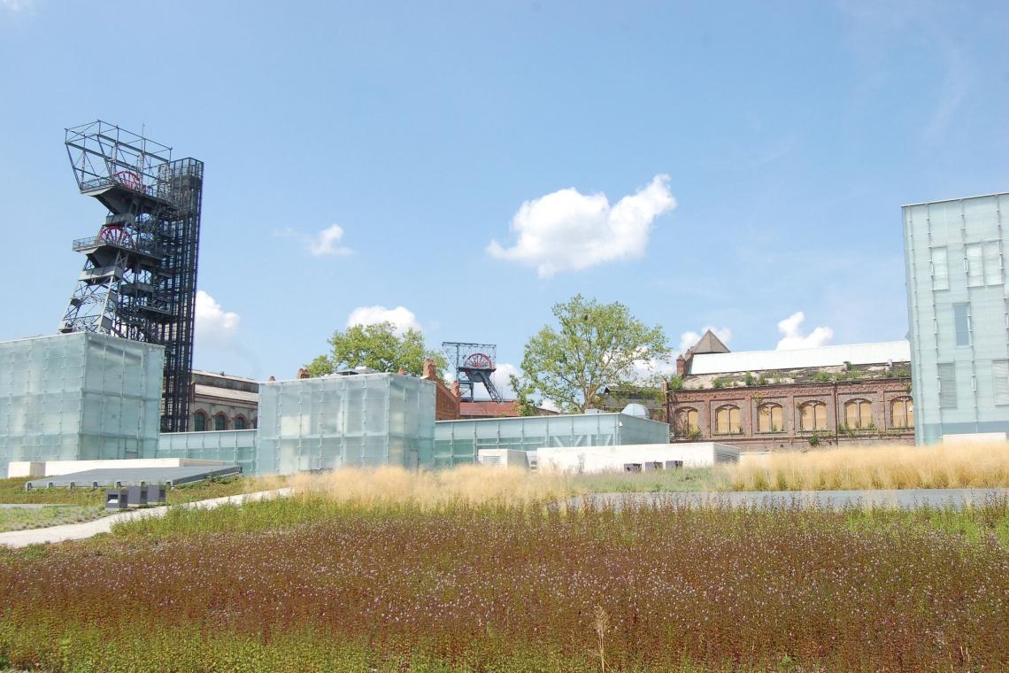 Symbol Muzeum Śląskiego w Katowicach przechodzi metamorfozę