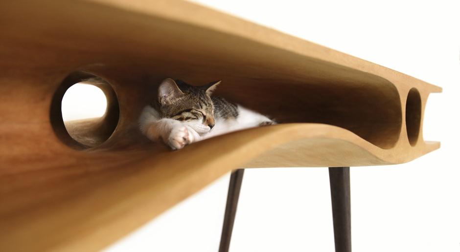 CATable - designerski stół nie tylko dla ludzi