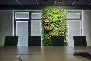 Żywe ściany w biurowcach, hotelach czy centrach handlowych - zobacz zdjęcia