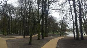 Łódź się zazieleni. Ponad 2,5 tys. nowych drzew w mieście
