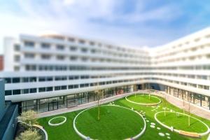 Zobacz zielone patio w centrum Wrocławia