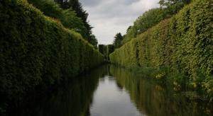 Palmiarnia, nowa oranżeria i motylarnia - tak się zmieni Park Oliwski