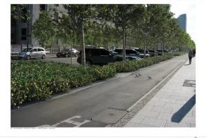 Szpalery drzew i eleganckie żywopłoty - tak się zmieni ulica Świętokrzyska