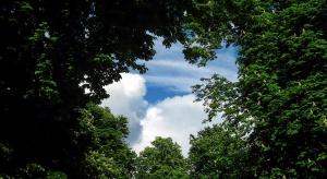 Park w Starachowicach czeka rewitalizacja. W planach konkurs