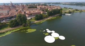 Zobacz miejsce spotkań inspirowane kwiatami lotosu