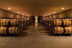Dom dla francuskiego wina. Zobacz niezwykłe dzieło Philippe'a Starcka