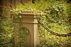 Dziewięć zabytków Starego Cmentarza uratowanych przed zniszczeniem