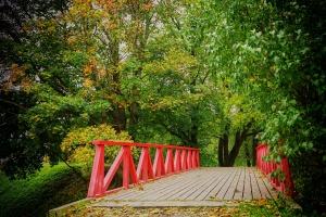 Zielona Góra rewitalizuje parki