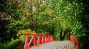 Ruda Śląska stawia na rewitalizację terenów zielonych