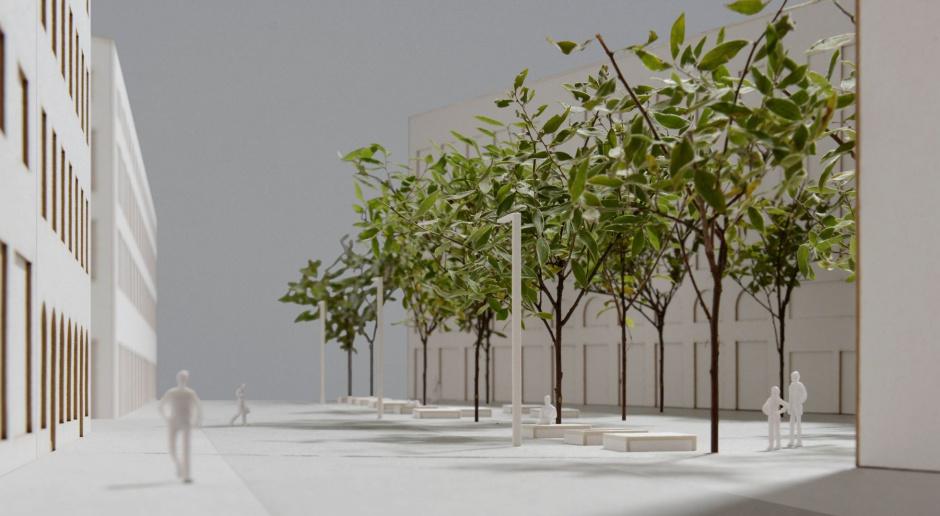 Drzewa zamiast samochodów. Zobacz pomysł na nowy Plac Pięciu Rogów