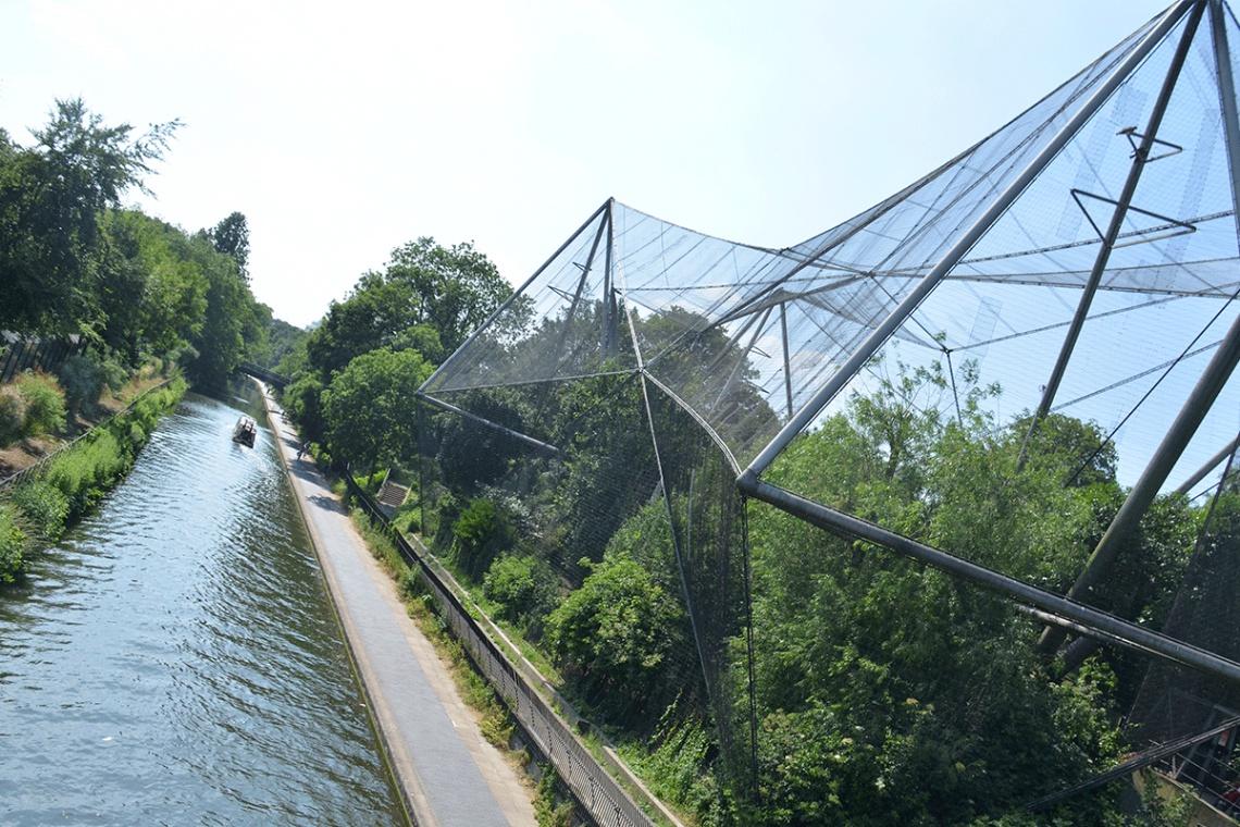 Elita architektów zaprojektuje... część zoo