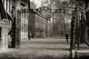 Rozbudowa parku nieopodal Miejsca Pamięci Auschwitz I na finiszu