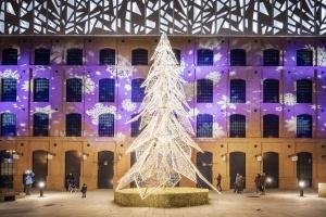 Sukcesja błyszczy dzięki iluminacji świątecznej