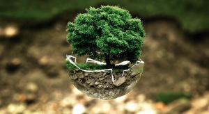 Sztuczne drzewo... źródłem prądu