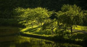 Ten park ma być wizytówką regionu. Samorząd walczy o 200 mln złotych