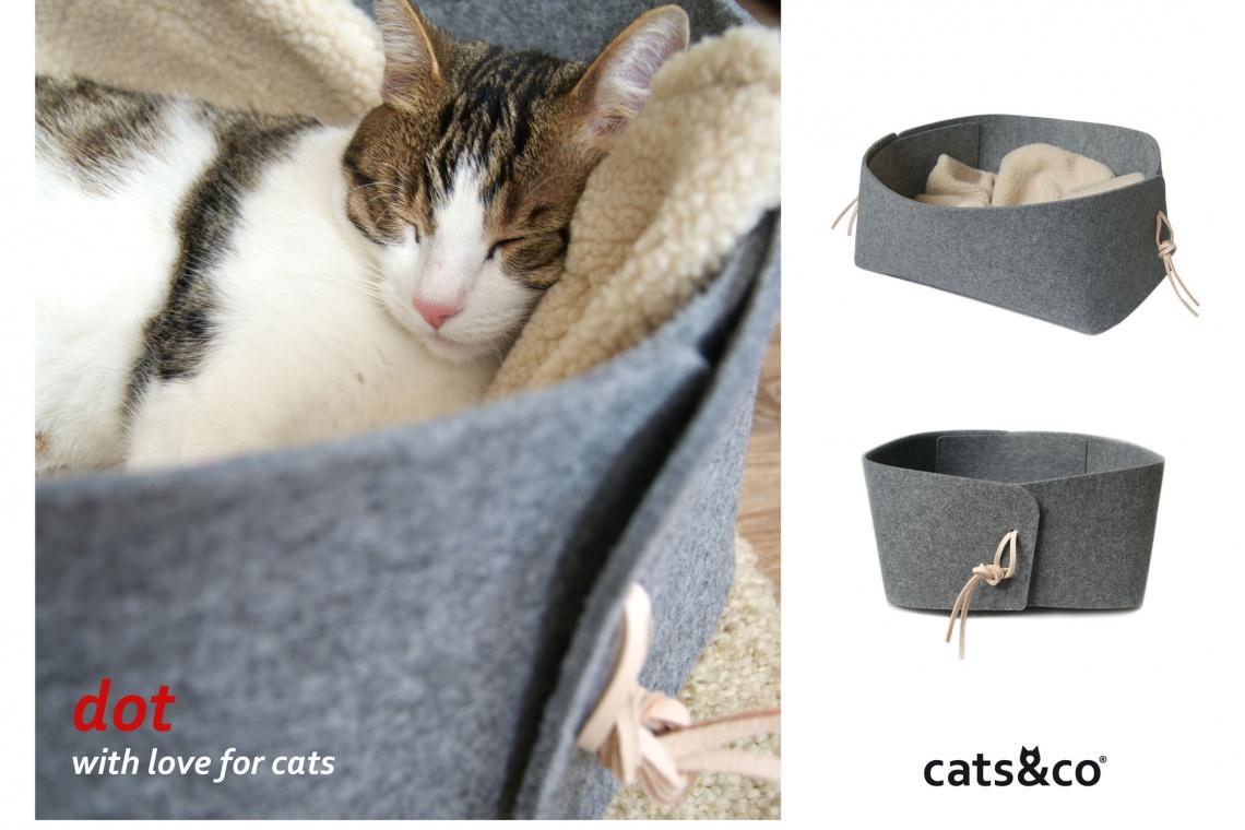 Design dla kota doceniony