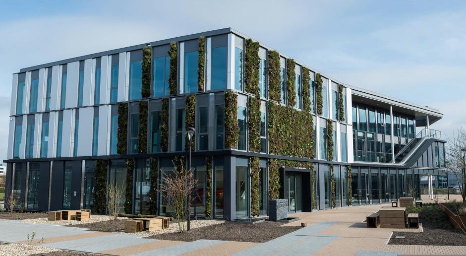 Biuro w stylu biophilic design - zobacz projekt z Holandii
