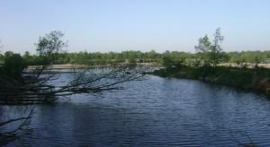 Konstancin-Jeziorna z nowymi widokami na rzekę